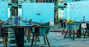 Informe Digitalización del Restaurante