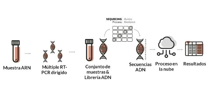 Workflow de detección de ARN Vilar del Covid-19, Biome Makers